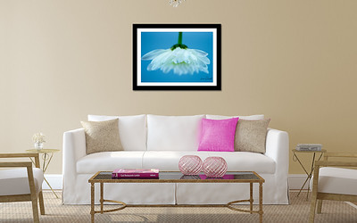 20 X 30 print framed of Bloom Bottoms Reflection