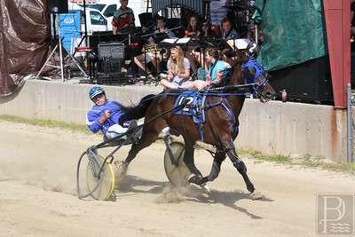 WP-BHF-pulling-harness-racing-two-090816-AB