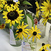 WP-BH-Fair-sunflowers-090816-ML