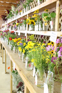 WP_BH_Fair_flowers_090618_ML