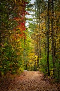 Trail to High Falls