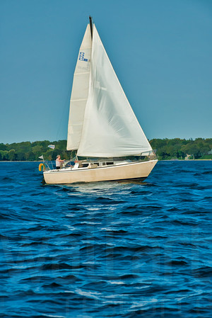 Minnesota Sailboats 022 | Wall Art Resource