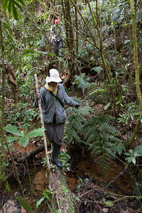 Stream Crossing, Tintaya Plot, Madidi, Bolivia. Pictured: Esther Mosqueira