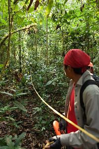 Re-establishing the Sampling Grid, Tintaya Plot, Madidi, Bolivia. Pictured: Romeo Villanueva