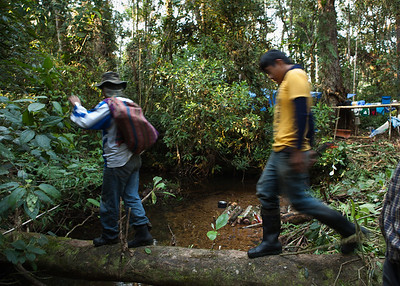 On Route to the Plot, Tintaya Plot Expedition, Madidi, Bolivia