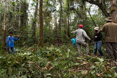 Clearing Base Camp -Tintaya Plot Expedition, Madidi, Bolivia