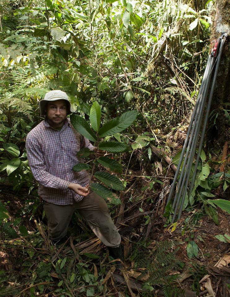 Trait Sampling, Tintaya Plot, Madidi, Bolivia. Pictured: Jonathan Myers. Photo credit: Ivan Jimenez