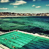 Bondi Swimmers~