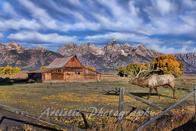 Mormon Barn - Grand Tetons National Park
