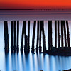 Row of Decayed Pilings Silhouetted at Sunrise from Castle Island South Boston