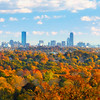 Historic Back Bay Boston Skyline with Autumn Trees During Golden Hour