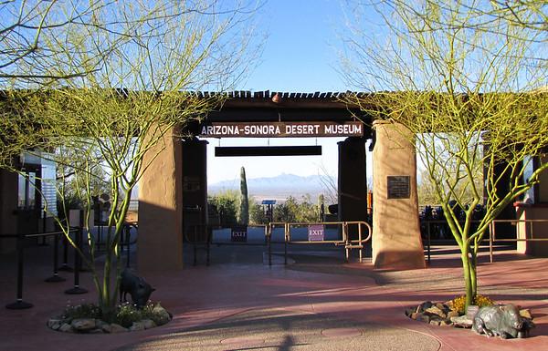 Arizona-Sonora Desert Museum (3)