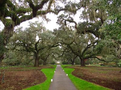 2014 Brookgreen Gardens, SC (6)