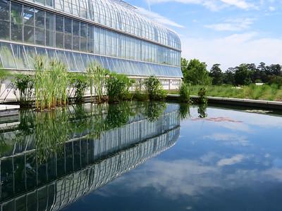 Lewis Ginter Botanical Garden (5)
