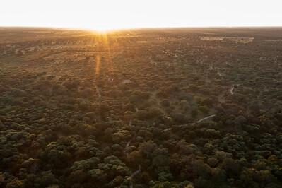 Okawango