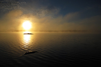 Gillis Lake Sunrise