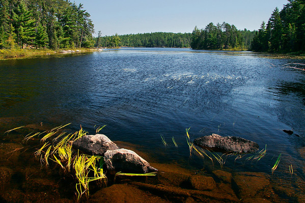Coxey Pond