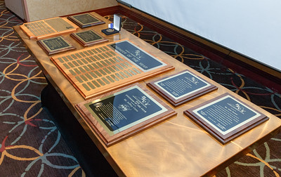 Awards and Recognition (45)