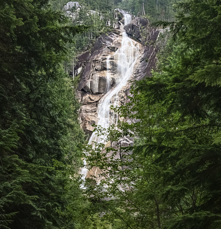 Shannon Falls in August.