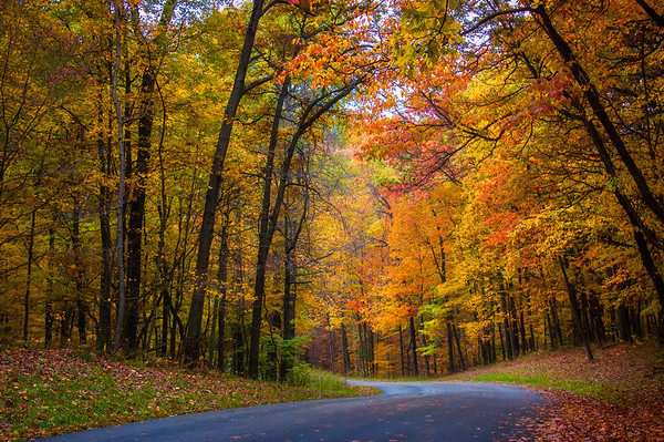 Autumn Drive through Brown County State Park