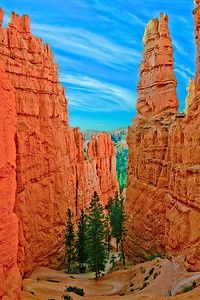 Navajo Loop Trail