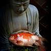 Buddha With Fish