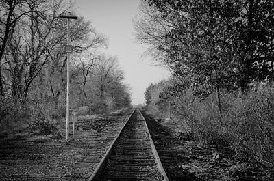 Abandoned Railroad Tracks - Ridgefield, New Jersey