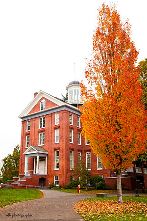 Oregon Fall- Willamette Campus