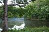 Farm Pond IMG_8910