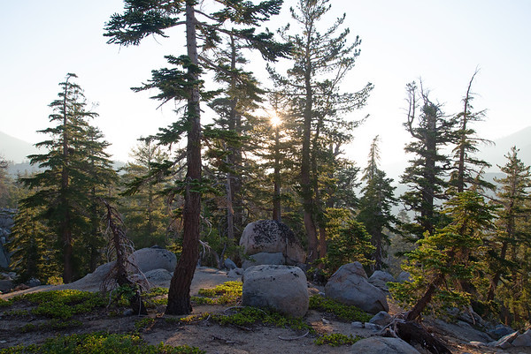 Smoky skies in an old growth forest in the Desolation Wilderness near Lake Tahoe.