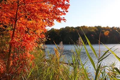 Green Lakes 0192 LOGO
