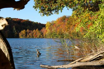 Green Lakes 0198 LOGO