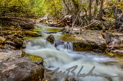 Cottonwood Creek II