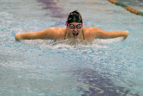 Clarkson Athletics: Swimming vs. Oswego State
