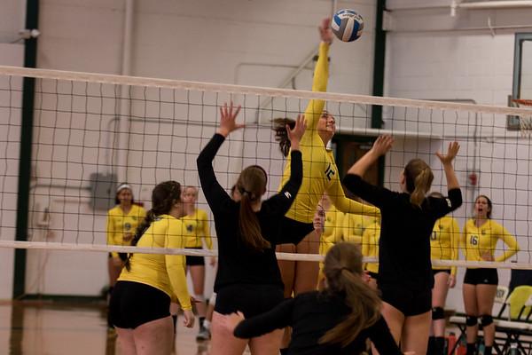 Clarkson Athletics: Women Volleyball