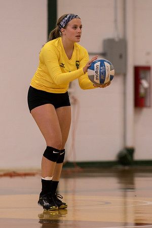 Clarkson Athletics: Women Volleyball