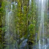 Mossbrae Falls - close up