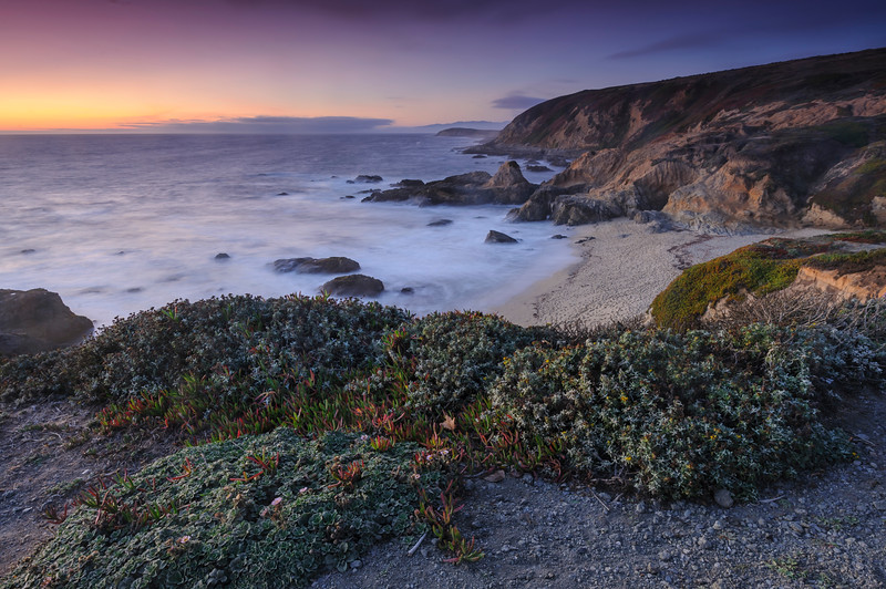 Coastal Lucidity
