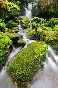 """Fairy Falls"" - Redwood National Park, CA"