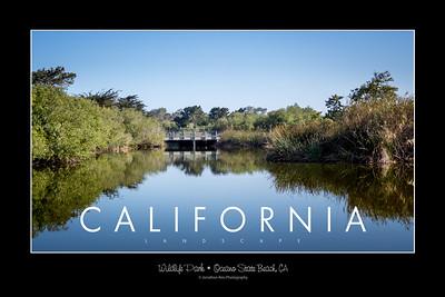 Wildlife Park • Oceano State Beach, CA