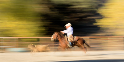 Slow shutter and panning.