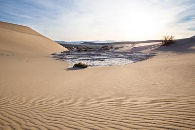 Mesquite Fat Sand Dunes III