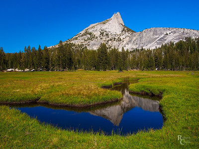 Cathedral Meadow