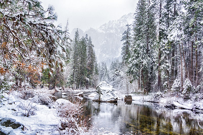 Merced River on a Winter Day
