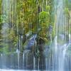 Mossbrae Falls - horizontal panorama