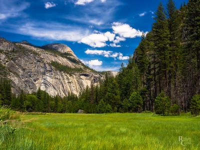 Springtime in Yosemite