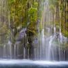 Mossbrae Falls - a.k.a forbidden falls