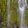 Mossbrae Falls - vertical panorama