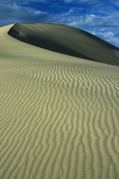 Sand Dune at Mesquite Flat<br /> Near Stovepipe Wells, Death Valley
