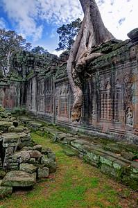 Preah Khan, Siem Reap, Cambodia (6)